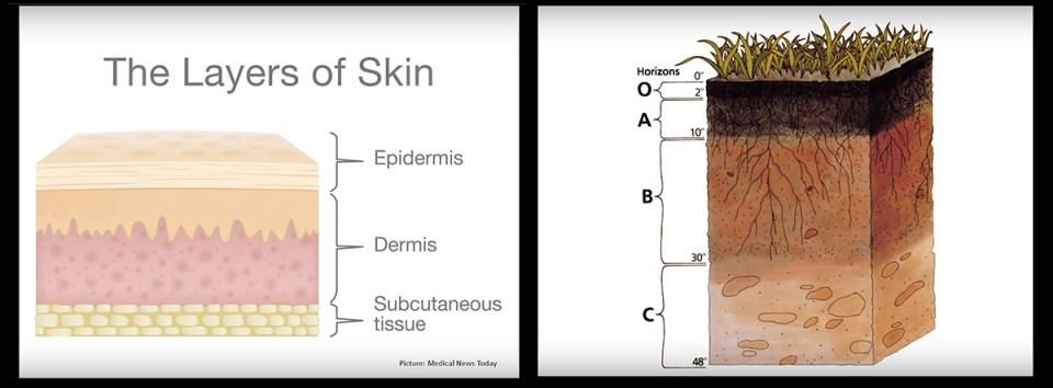 soil membrane graphic