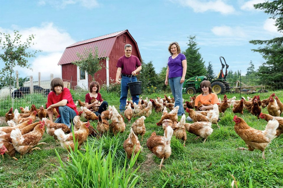 Mark and Melissa Moeller and famiy pose in the pasture with their chickens at Misty Meadows Farm Washington