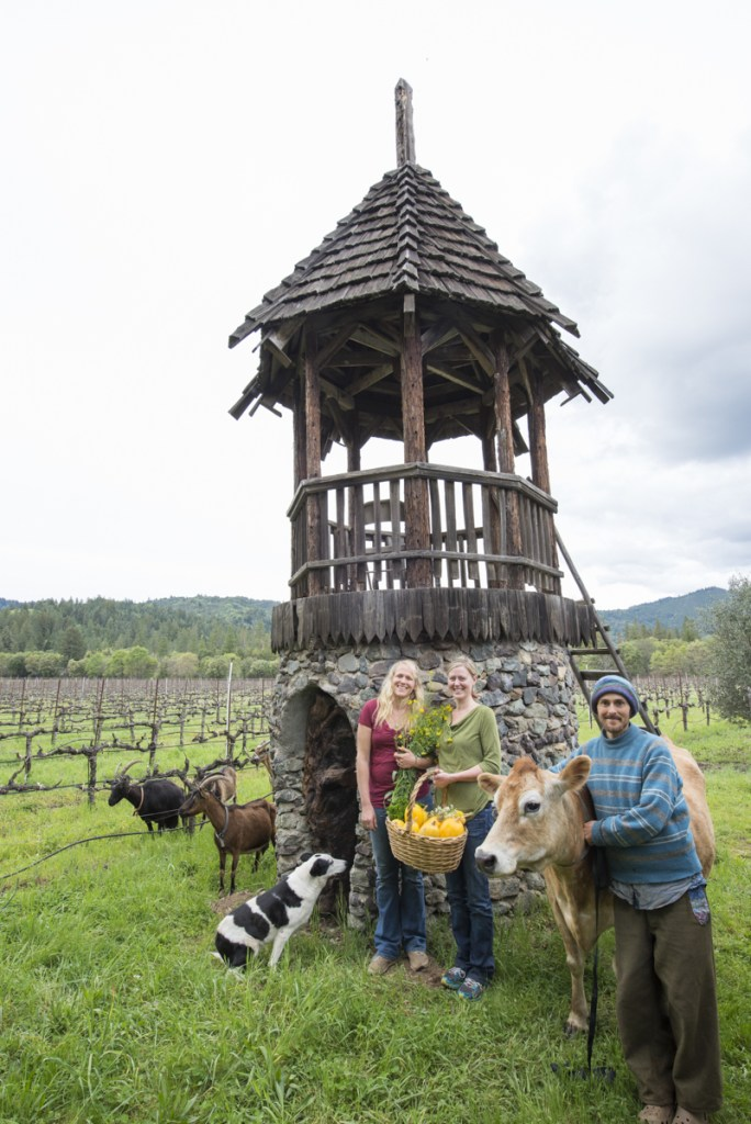 A group of Frey farmers and farm animals near the rustic tower