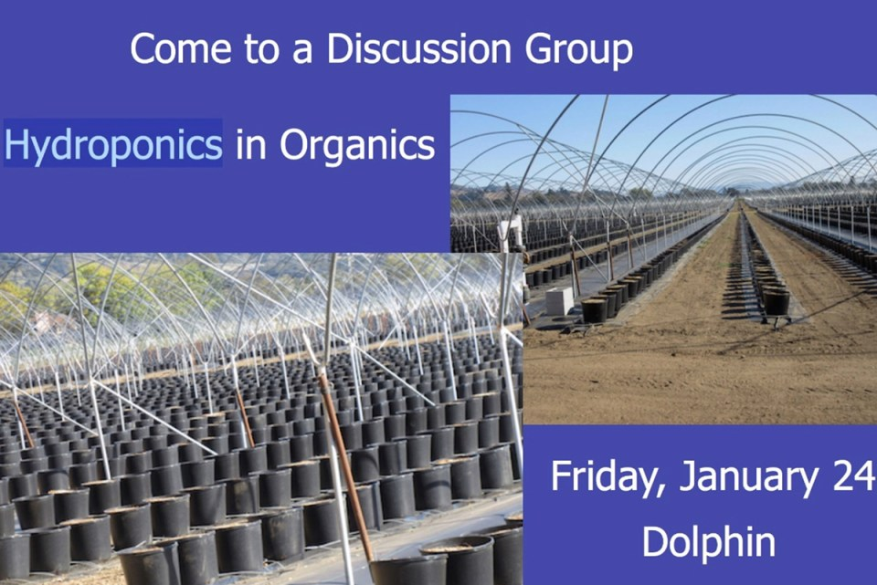 hydroponics in organic discussion group at ecofarm 2020 graphic