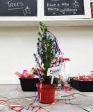 Decorating the magic trees