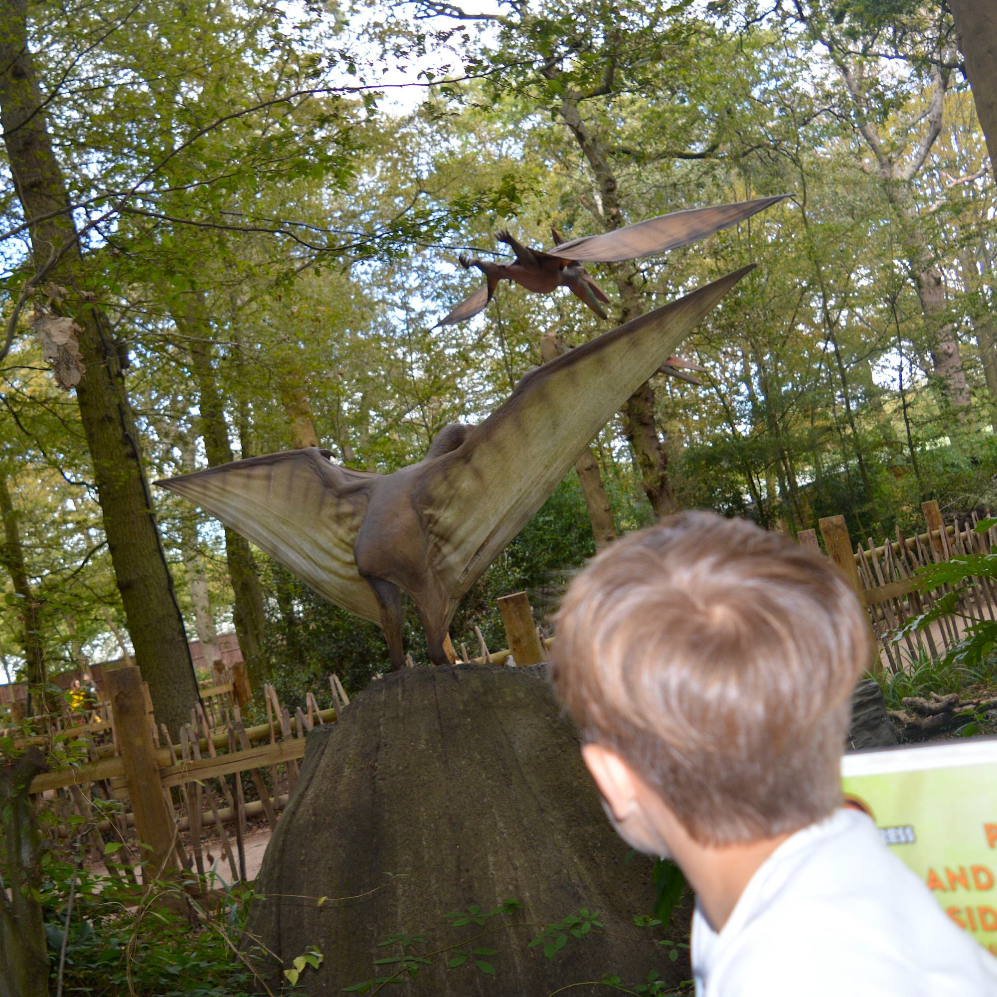 Paradise Wildlife Park Dinosaur Train