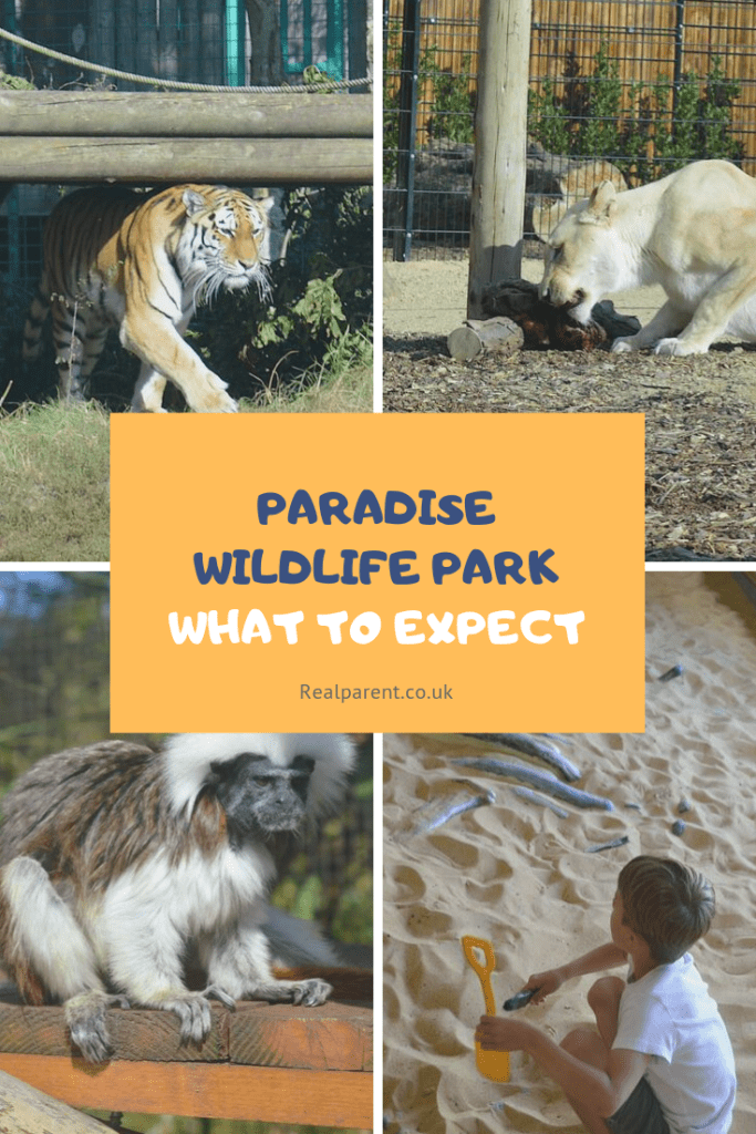 What to expect at Paradise Wildlife Park