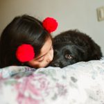 4 Things To Consider When Getting a Dog for the Family