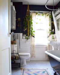 Shower Plants Are The Biggest New Trend In Home Dcor ...