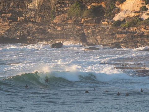 dy point surf