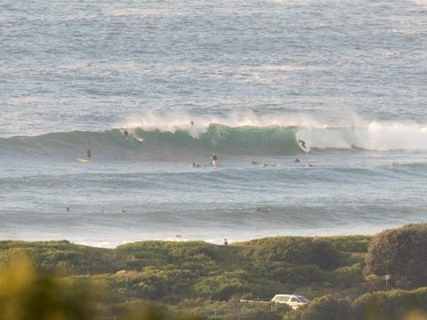 dy point wave
