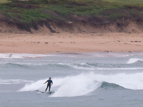 Longy surfing
