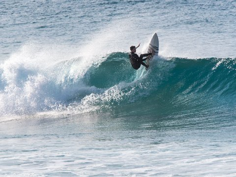 curly surfing