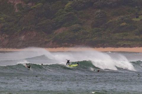 Collaroy surfing