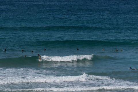 shelley beach surfing