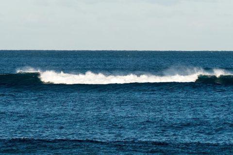 long reef