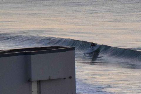surfer south narrabeen