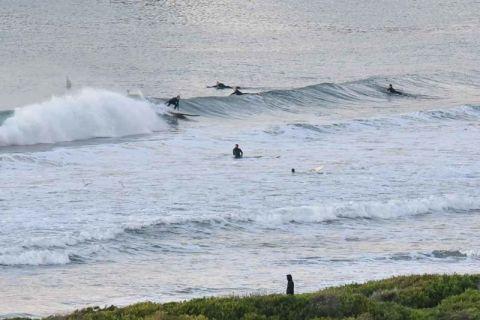 dy beach surfers