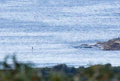 Quiet at the point as loan paddler conducts an inspection