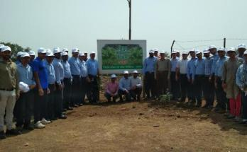 Jindal, Steel and Power Limited, World Environment Day, tree planting,