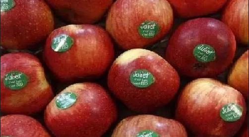 Ban on sale of sticker bearing fruits,