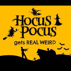Hocus Pocus Sorting Hat