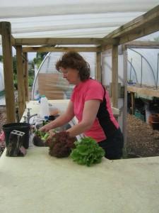 Expert salad bag prep at the garden sink