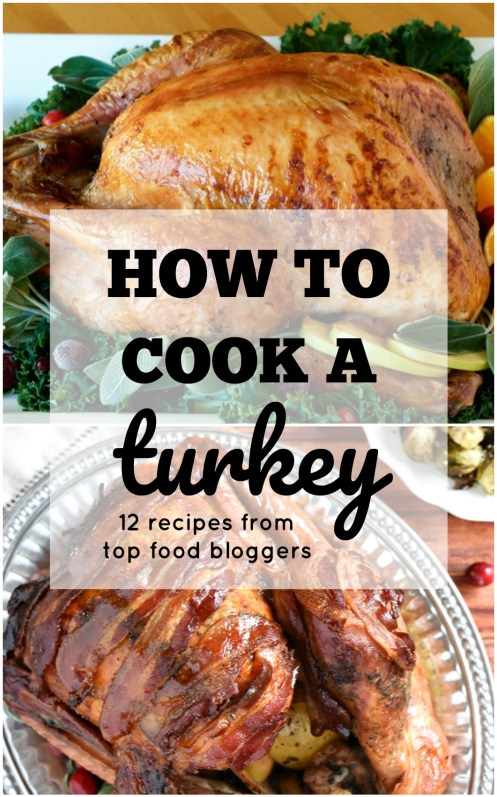 Cooking the perfect turkey for Thanksgiving can cause a ton of unnecessary stress.  Learning how to cook a turkey doesn't have to be complicated. Get the best turkey recipes from Top Food bloggers here.