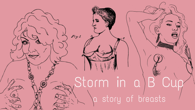 Storm in a B Cup a story of breasts exhibition by artist Rebecca D. Harris