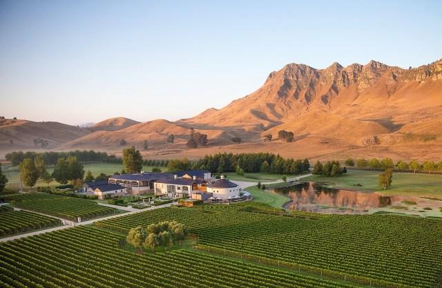 Craggy-Range Hawkes Bay vineyard
