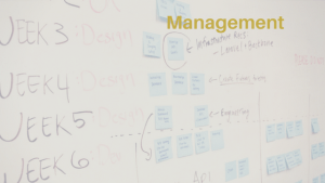 Management Header