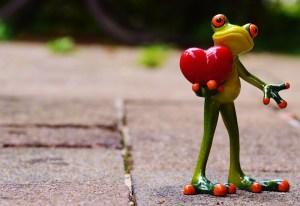 Wordpress Spammers Love