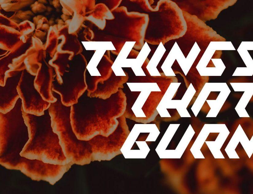 Things That Burn by Rebecca Jones-Howe