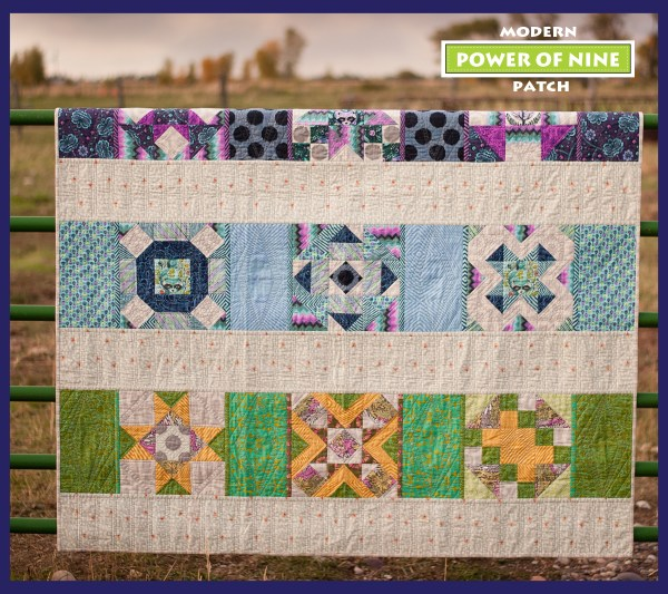 Power of nine block of the month in tula pink fabric