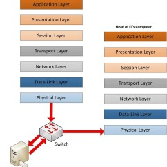 Diagram Of Osi Reference Model What Does A Cell Look Like The T