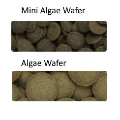 Hikari Tropical Algae Wafers Pellet Size