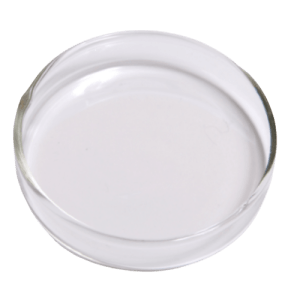 IMGSD100 Glass Feeding Dish at Rebel Pets