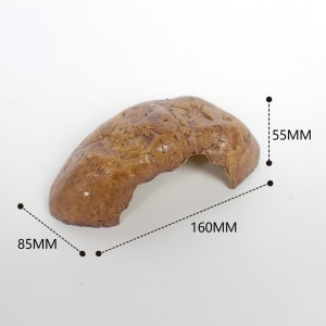 Gecko Hide dims (16 x 8.5 x 5.5cm) at Rebel Pets