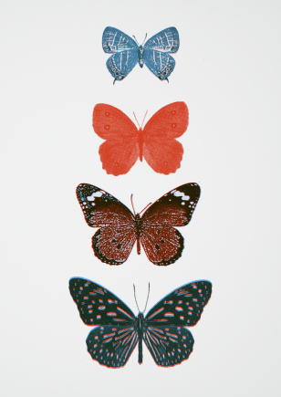 screen print in 2 colours of butterflies minimal print