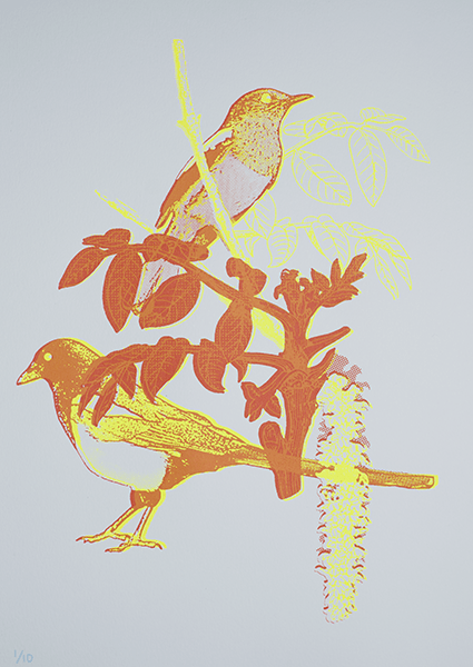 two magpies special edition 2 colour screen print on Fabriano paper