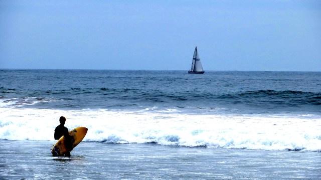 ridesurf_LA
