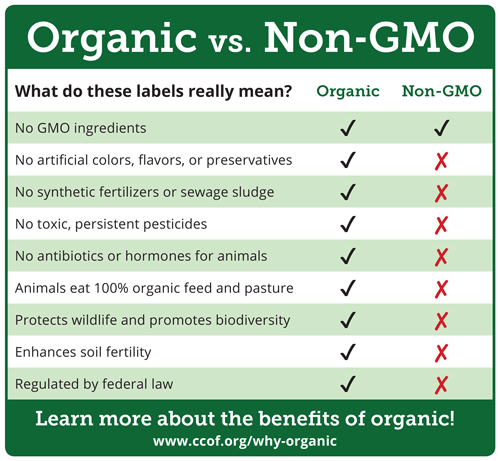 organic vs non organic 2 essay This is an essay i wrote for my english class it covers organic vs non-organic pros/cons.