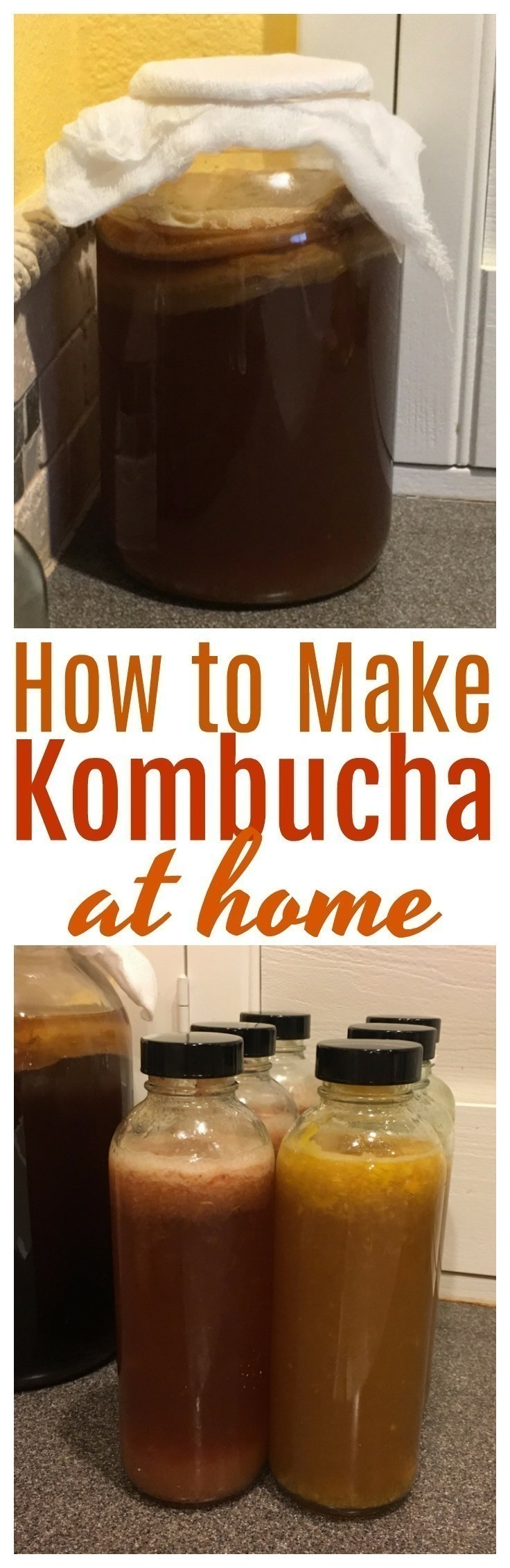 Kombucha is a fermented probiotic beverage of black or green tea and sugar, that can be easily made at home with a tremendous cost savings. #probiotic   #fermented   #kombucha