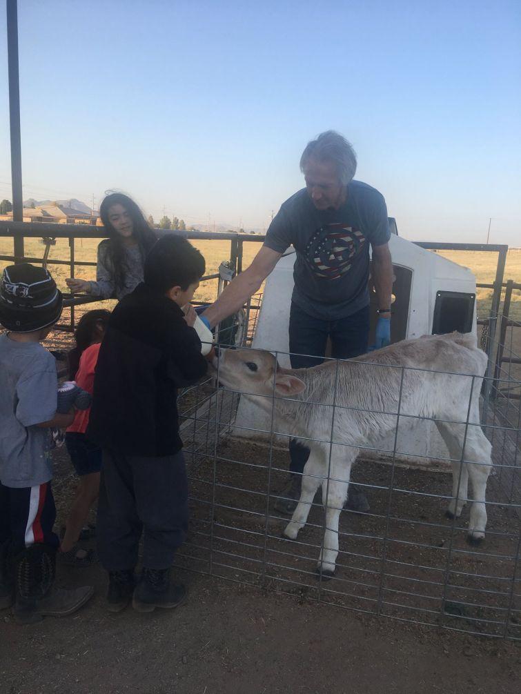 Green Pastures Raw Milk Dairy Farm, Casa Grande, Arizona
