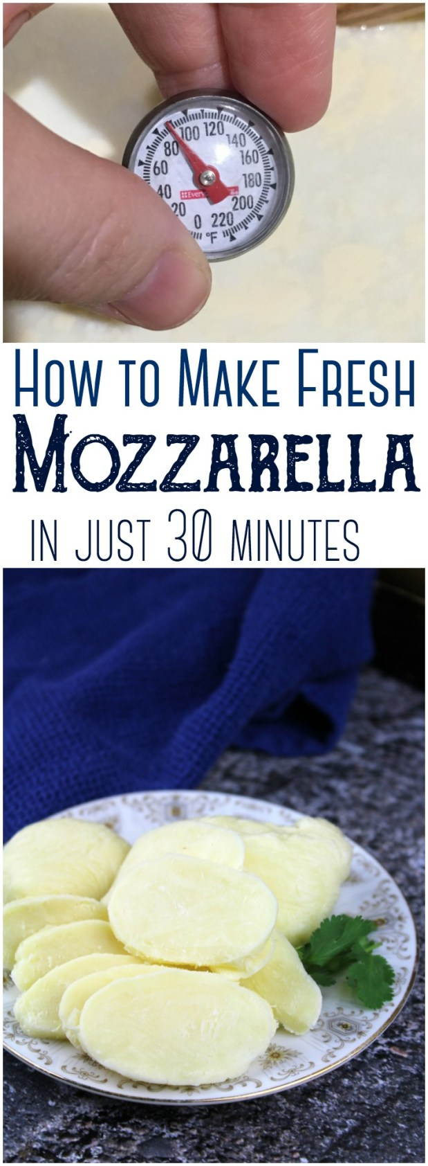 How to Make Fresh Mozzarella: Turn a gallon of raw milk into fresh mozzarella cheese in just under 30 minutes with this complete step-by-step (including pictures!)  #cheese #cheesemaking #rawmilk #mozzarella