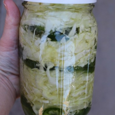 Fermented Cabbage and Jalapeño Slaw