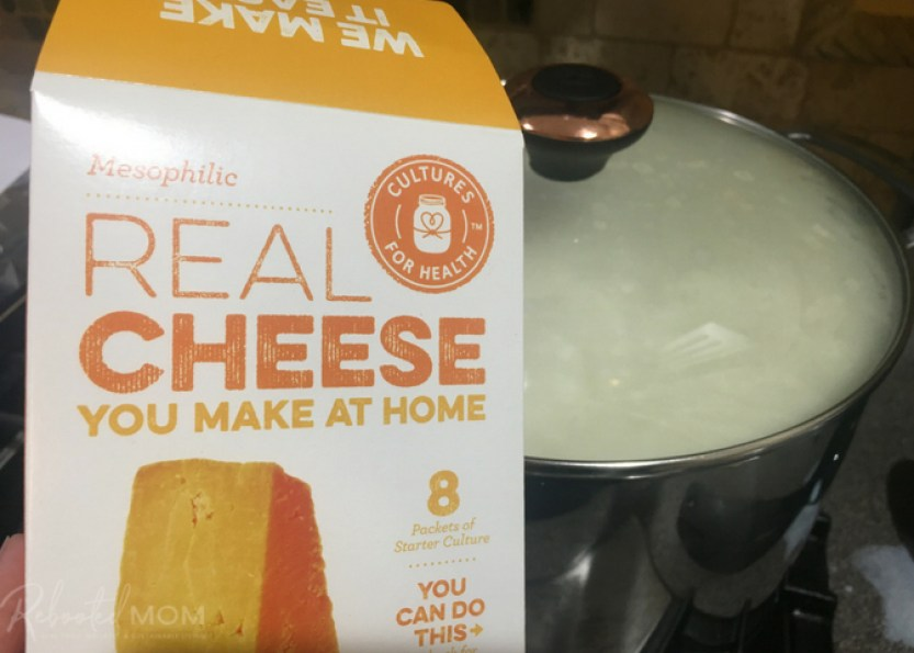 Bovre Cheese (much like homemade chevre cheese) is super delicious - and easy to make at home with a gallon of raw cow milk.