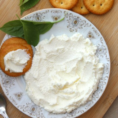 How to Make Quark Cheese