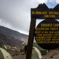 Kilimanjaro day four: Baranco Camp