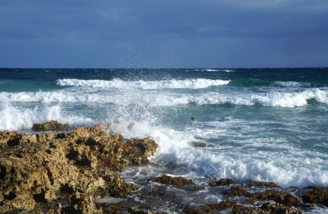The top 3 excursions near Cancun: Cozumel