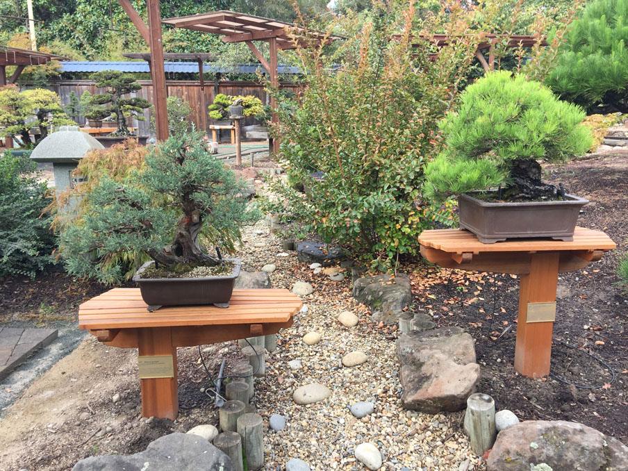 New red cedar display stands