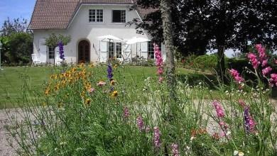 Photo of Tips and Ideas for Garden Design