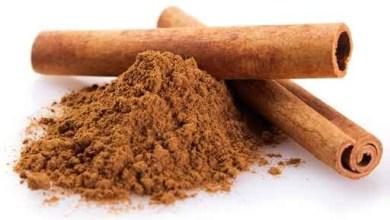 Photo of CASSIA LIGNEA-تج For Reduce High Body Temperature – Alternative Methods