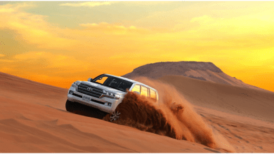 Photo of How Desert Safari Sharjah Offers ?